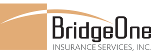 BridgeOne Insurance